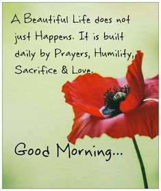 1225 Best Good Morning Wishes Quotes Images In 2019 Good Morning