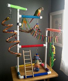 RAINBOW-Medium-Tabletop-amp-Cagetop-PVC-Bird-Gym-Play-Stand-with-Ladder-amp-Perches