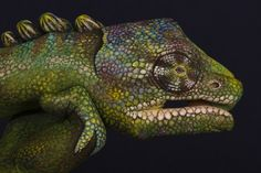 Hand painting by Guido Daniele.