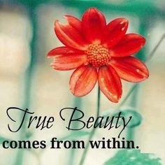 True BEAUTY Comes From Within The Best Collection Of Quotes And Sayings For Every Situation In Life