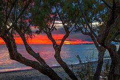 """Tamarisk sunset"" by Hercules Milas | Redbubble Framed Prints, Canvas Prints, Art Prints, End Of Summer, Sunrises, Crete, Hercules, Long Hoodie, Wood Print"