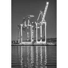 """Loading Cranes #8, Port of Oakland"""