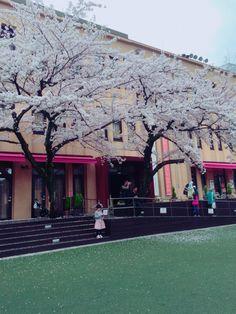 http://ejje.weblio.jp/content/Kyoto+International+Manga+Museum  Karasuma-Oike, Nakagyo-ku, Kyoto 604-0846 Japan