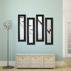 Rayne Mirrors Molly Dawn Attractive Wall Mirror - P53/4-16