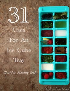 31 uses for an ice cube tray...
