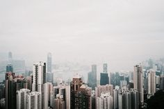 narroe: city never sleeps (by librarymook) Palaces, Gatsby, Priscilla Ahn, Seattle Skyline, New York Skyline, Hong Kong, Wise Girl, Annabeth Chase, Caroline Forbes