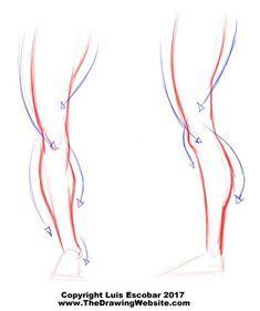 Figure Drawing Tutorial, Male Figure Drawing, Body Reference Drawing, Anatomy Reference, Art Reference Poses, Drawing Legs, Drawing Poses, Human Anatomy Drawing, Anatomy Art