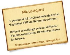 Eloigner les moustiques avec l'He de citronnelle et de Géranium odorant