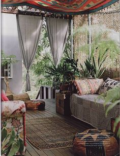 Outdoor room - ferns under a pergola