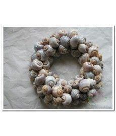 Nattai 1 kilo schelpen wit landslakachtige