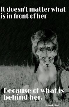 I love to think if Jesus, the Lion of Judea, standing behind me, having my back always, being my protector and my strength! I absolutely love this picture! Great Quotes, Me Quotes, Motivational Quotes, Inspirational Quotes, Qoutes, Lion Quotes, Got Your Back Quotes, King Queen Quotes, Fierce Quotes