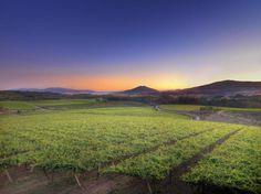 Lagar de Fornelos (O Rosal, Pontevedra) - Ruta do Viño Rías Baixas