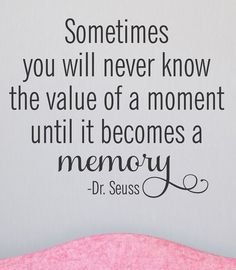 'Value of a Moment' Wall Quotes Decal