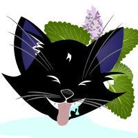 A Guide to Understanding Catnip [Infographic]