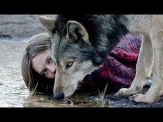 WILD   Trailer [HD] - YouTube