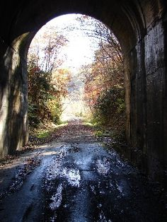 Guest River Gorge Trail (an old rail trail in Scott and Wise County, VA). 11.6 miles.  There are plenty of places to stop and photograph, including a waterfall.