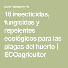 16 insecticidas, fungicidas y repelentes ecológicos para las plagas del huerto | ECOagricultor
