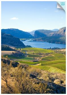 The Okanagan Valley is BC's premier grapegrowing region. From boutique vineyards to world-class wineries, wines from the Okanagan Valley are rich in tradition and character, consistently ranking among the world's best at international competitions. The Places Youll Go, Places To See, Ontario, Canadian Travel, Wine Vineyards, Canada, In Vino Veritas, Italian Wine, Wine Country