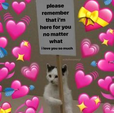 Cat Memes, Funny Memes, Flirty Memes, Wholesome Pictures, Heart Meme, Response Memes, Cute Love Memes, Love You Cute, Love Memes For Him