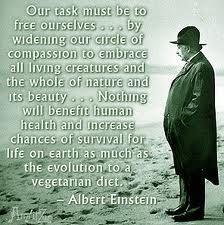 Vegetarian Einstein