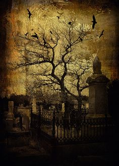 Halloween, All Hallows Eve, Trick or Treat, Black Cat, Bat, Cauldron, Cobwebs, Candle, Goblin, Ghost, Ghouls, Grim Reaper, Grave Keeper, Raven, Skull, Spiders, Scarecrow, Skeleton, Vampire, Witch, Jack-O-Lantern, Pumpkin, Spooky, Spells, Scary, Haunted House, Haunting, Creepy, Frightening, Full Moon, Autumn, Fall, Magic Potion - by Mark Edwards