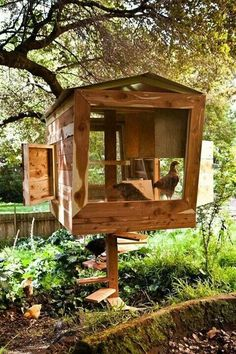 Raising chickens has gained a lot of popularity over the past few years. If you take proper care of your chickens, you will have fresh eggs regularly. You need a chicken coop to raise chickens properly. Use these chicken coop essentials so that you can. Backyard Chicken Coop Plans, Building A Chicken Coop, Chickens Backyard, House Building, Simple Chicken Coop Plans, Urban Chicken Coop, Small Chicken Coops, Green Building, Chicken Coop Designs