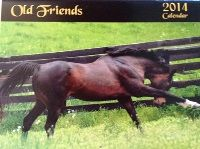 Welcome to Old Friends Equine - A Retirement Home for Thoroughbred Race Horses Old Friends Equine