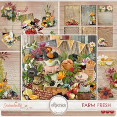 Farm Fresh Collection