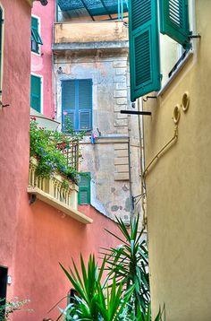 Something about this inspires me: Calle de Manarola  Tomada en Manarola bellisimo pueblo costero de Cinque Terre en La Liguria al norte de Italia.