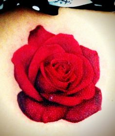 My newest realistic rose tattoo done by Jared Preslar. Rose tattoo , realism , 3d tattoo , realistic tattoo , best tattoos