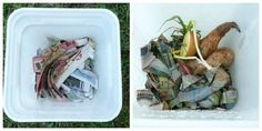 Build a vermicompost bin for worm composting in just 30 minutes. Worm castings are a rich garden amendment that will make your garden grow!