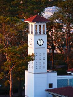 Learn About Emory University and What It Takes to Get In: Emory University Clock Tower