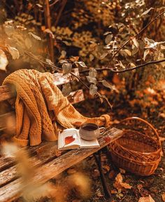 Herbst Bucket List, Autumn Cozy, Autumn Aesthetic, Fall Wallpaper, Autumn Photography, Fall Pictures, Hello Autumn, Autumn Inspiration, Happy Fall