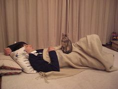 Gen Hoshino with cat I Love Cats, My Boyfriend, Actresses, Album, Actors, Guys, People, Image, Musicians