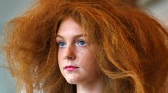 Police investigate 'ginger hate crime' by illiterate vandals http://sumo.ly/88oI  © Tim Wimborne