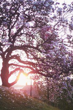 @allthingsshabbyandbeautiful #UrbanOutfitters #Spring #UOSpring