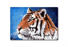 TIGER 7 portrait big cat feline pencil painting Sandrine Curtiss Art Limited Edition Print ACEO by Sandrinesgallery