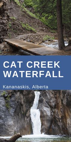 Cat Falls is a beautiful destination without too much effort making it the perfect hike for families. The views, bridges, and waterfall make this a hike that everyone will enjoy. Oh The Places You'll Go, Places To Travel, Travel Destinations, Places To Visit, Camping Places, Voyage Canada, Alberta Travel, Waterfall Hikes, Canadian Travel