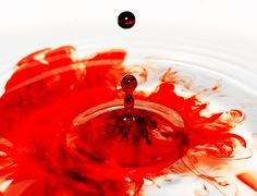 I can detect one drop of blood in 25 Gallons of water! Blood In Water, Water Water, Water Aesthetic, Red Aesthetic, Blood Drop, Tv Tropes, The Guilty, Young Blood, One Drop