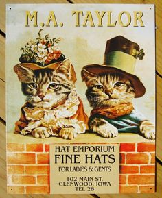 MA Taylor Fine Hats TIN SIGN vtg victorian clothing ad wall decor cat kitten 360