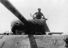 PzKpfw V Panther from 5. SS Panzer Division Wiking