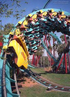 Kumba roller coaster at Busch Gardens Tampa