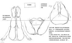 [Translation] tutorial on drawing anime aspects, p station, ...