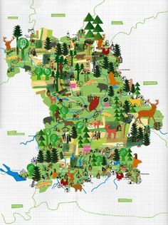 Julia Pfaller -Germany  Viel Wald / Map