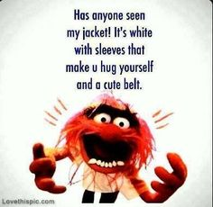 Hahahaha!!! has anyone seen my jacket funny quotes quote lol funny quote funny quotes humor