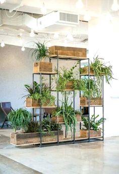 DOMINO:How to Decorate With Plants This Fall, According to an Expert DOMINO: Wie man diesen Herbst mit Pflanzen dekoriert, so ein Experte Home-Indoor