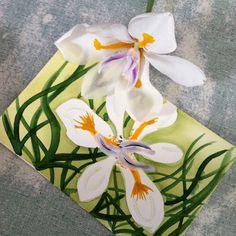 Iris watercolor sketch by Kelly Johnson Nature journaling for @ihanna's DIY Postcard Swap Spring 2016 #diypostcardswap Sign up here http://www.ihanna.nu/postcard-swap/