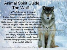 Animal Spirit Guide – The Wolf – Witches Of The Craft® Spirit Animal Totem, Wolf Totem, Animal Spirit Guides, Animal Totems, Animal Meanings, Animal Symbolism, Wolf Symbolism, Native American Spirituality, Native American Quotes