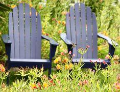 Watching hummingbirds in Mendocino California Outdoor Chairs, Outdoor Furniture, Outdoor Decor, Mendocino California, Hummingbirds, Home Decor, Decoration Home, Room Decor, Garden Chairs