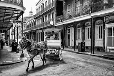 "5.3.2016 ""A mule ride through the Quarter"" New Orleans Louisiana. Well that's it- 15 different photos I took in 48 hours in New Orleans. Everywhere I went the people that recognized me all said the same thing: ""Randy! Welcome to New Orleans! I hope you're enjoying your time in our city."" I certainly did (as I always do) & I'll be back to eat visit friends & shoot photos without having to worry about the whole work thing- I could easily do a small photo book if I had just a week there to…"